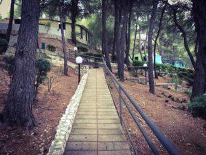 Il villaggio Elisena è immerso in una pineta secolare a poca distanza dal mare