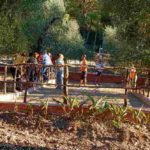 Agriturismo Vieste Villaggio Elisena